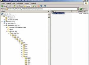 Файловая структура хранилища ADMS
