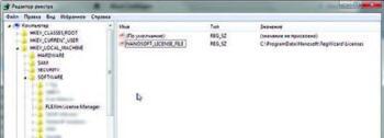 Рис. 3. Переменная NANOSOFT_LICENSE_FILE из реестра Windows хранит путь, по которому располагаются файлы лицензий для программных продуктов ЗАО Нанософт