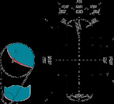 Рис. 7. Геометрия профиля верхнего валка клети P03 согласно варианту 1