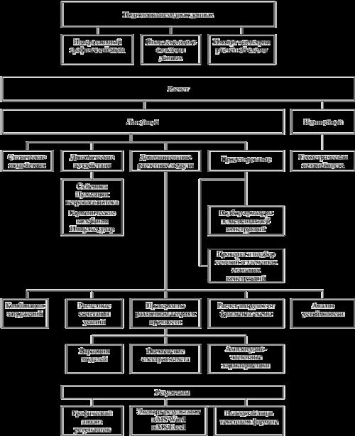 Рис. 2. Структура ВК SCAD