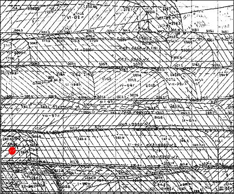 Рис. 1. Растровое изображение участка