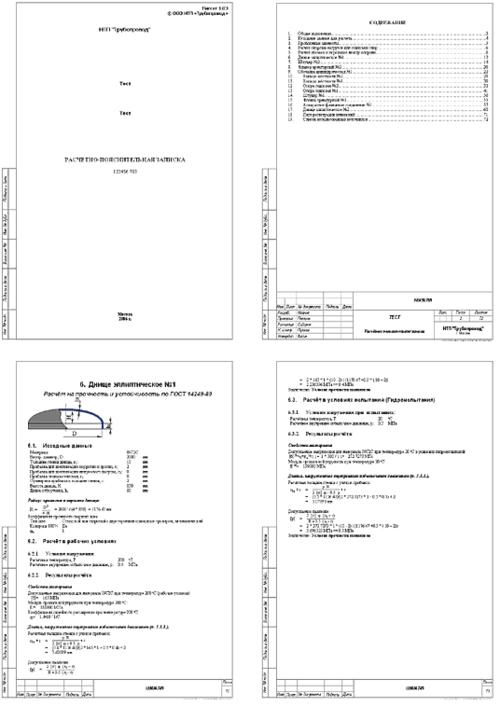 Рис. 5. Отчет в формате RTF (MS Word)