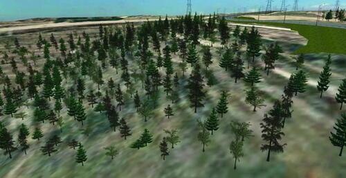 Рис. 10. Деревья