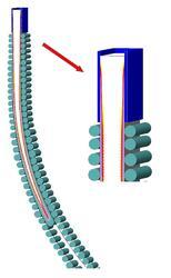 Расчет движения сляба в модуле «Фурье-3D»
